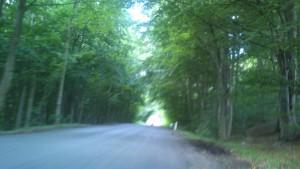 Landevejsløb