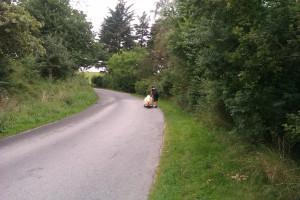 dm-2012-landevej-kridtbakken-walking-4
