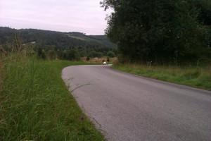 dm-2012-landevej-kridtbakken-walking